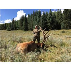 4-day/3-night Colorado Elk hunt up to 379 SCI and Trout Fishing for One Hunter and One Observer