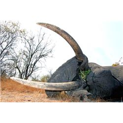 10-day Namibia Non-Export Elephant Hunt for One Hunter and One Observer