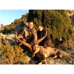 4-day Spain Beceite Ibex Hunt for One Hunter and One Observer