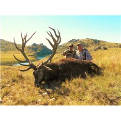 5-day Argentina Silver-Medal Red Stag Hunt and Sightseeing for One Hunter and One Observer