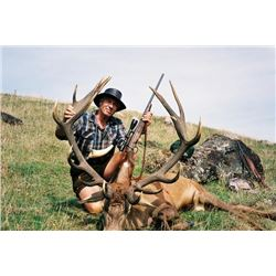 5-day New Zealand Free-Ranging Red Stag Hunt for One Hunter and One Observer