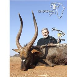 12-day South African Archery Hunt with $3,000 Towards Trophy Fees for Two Hunters and Two Observers
