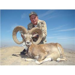 3-day Pakistan Blandford Urial Hunt for One Hunter