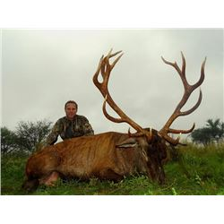 7-day Argentina Red Stag and Boar Hunt with Dove Shooting for Four Hunters