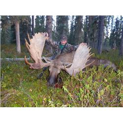 10-day British Columbia Moose and Wolf Hunt for One Hunter