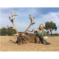 5-day 2 Iberian Red Stags and 2 European Wild Boar Hunt in Spain for Two Hunters and Two Observers