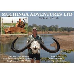 7-day Zambia Cape Buffalo and Plains Game Hunt for One Hunter and Two Observers