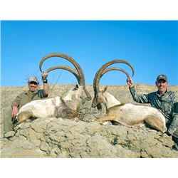 Pakistan Choice of Species Hunt for Either 3-day Sind Ibex Hunt or 7-day Himalayan Ibex Hunt for Two