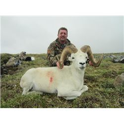 10-day Yukon Dall Sheep or Yukon Moose Hunt for One Hunter