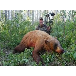 6-day Alberta Black Bear Hunt For One Hunter