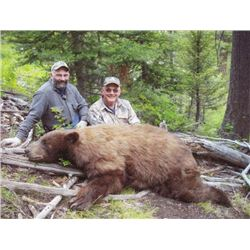 6-day Idaho Black Bear Hunt for Two Hunters