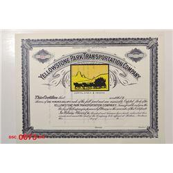 Yellowstone Park Transportation Co., ca.1900-1910 Specimen Stock