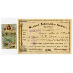 Hawaiian Agricultural Co., 1899 Stock Certificate.