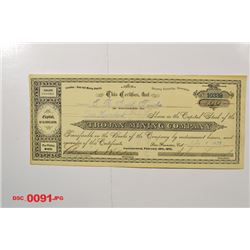 Trojan Mining Co., 1879 Issued Stock
