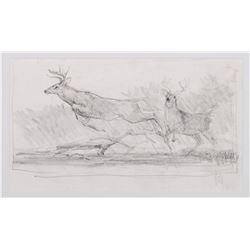 Sold as Set Elk Head Portrait- Kuhn, Bob