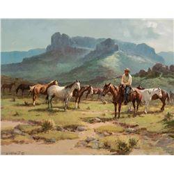 Ponies in Pasture