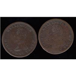 Wellington Tokens - Br 980. A pair of Wellington Halfpenny Token.