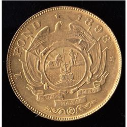 South Africa Gold Pond Coin, 1898