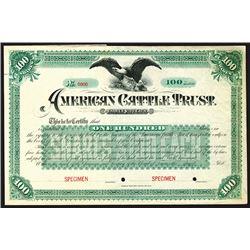 American Cattle Trust, 18xx (ca. 1880-90) Specimen Stock Certificate