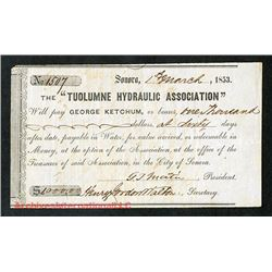 "Tuolumne Hydraulic Association 1853 ""Payable in Water"" Scrip Note."
