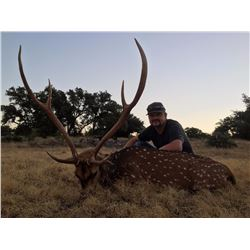 Axis buck & Rio Grande turkey combo hunt in El Dorado, Texas with AC Ranch (3 days/2 nights)