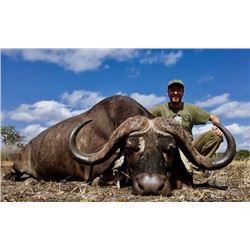 Cape buffalo hunt for one in Tanzania (7 days)