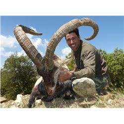 Spanish Ibex hunt for 2 hunters and 2 observers (4 days)