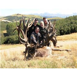 """Hunt in New Zealand for two hunters to take one red stag each, scoring up to 400"""" (5 days)"""