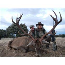 Iberian red deer, European fallow deer, or Iberian Mouflon sheep in Spain (4 days)