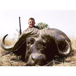 Cape Buffalo hunt for two hunters in Matetsi, Zimbabwe (10 days)