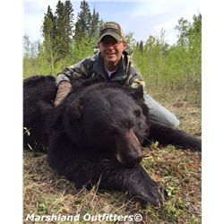 Spring black bear hunt for 1 hunter in Saskatchewan, Canada (5 days)