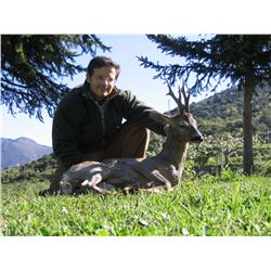 Roe deer hunt in Spain for two hunters and two observers (4 days)
