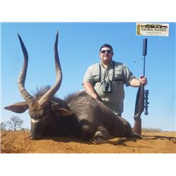 Zebra, blue wildebeest, impala, and warthog to be shared between 2 hunters (10 days)