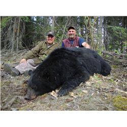 7 - DAY HUNT IN WHITEHORSE, YUKON FOR 2 BLACK BEARS FOR 1 HUNTER
