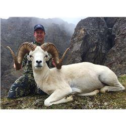 ALASKA CHUGACH DALL'S SHEEP PERMIT
