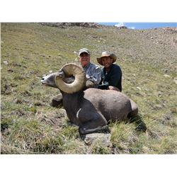 NEW MEXICO ROCKY MOUNTAIN BIGHORN SHEEP PERMIT
