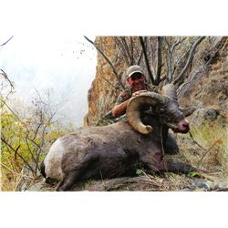 IDAHO BIGHORN SHEEP PERMIT