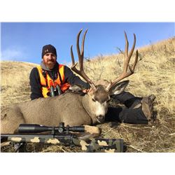 """2018 Montana """"Super Tag"""" Statewide Deer"""