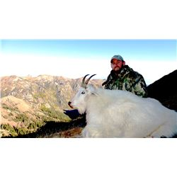 2018 Utah North Slope/South Slope, High Uintas Central Mountain Goat Conservation Permit