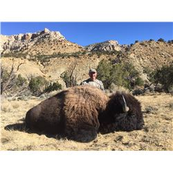 2018 Utah Henry Mtns Bison Conservation Permit Hunter's Choice (early) Permit