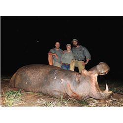 2018 or 2019 Hippopotamus-South Africa