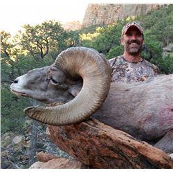2018 Utah Zion Late Desert Bighorn Sheep Conservation Permit
