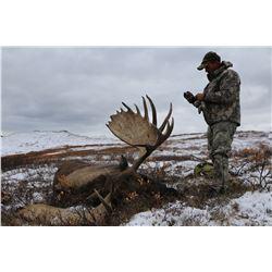 2019 or 2020 Horseback Moose/Grizzly Combination Hunt in Alaska for 1 Hunter