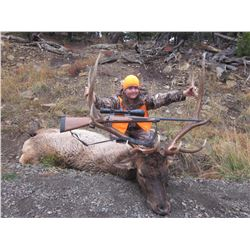 5-Day Fully Outfitted Colorado Archery Bull Elk Hunt for One (1) Hunter