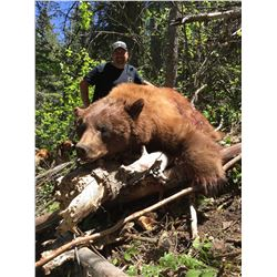 2018 Utah Statewide Bear Conservation Permit