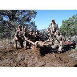 2018 Utah Southwest Desert Multi-Season Elk Conservation Permit