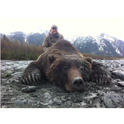 10-Day Alaska Brown Bear Hunt