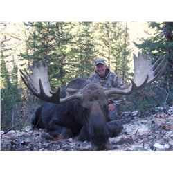 2018 Utah Statewide Moose Conservation Permit