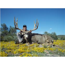 2018 Nevada Units 241 & 242 Landowner Mule Deer Permit
