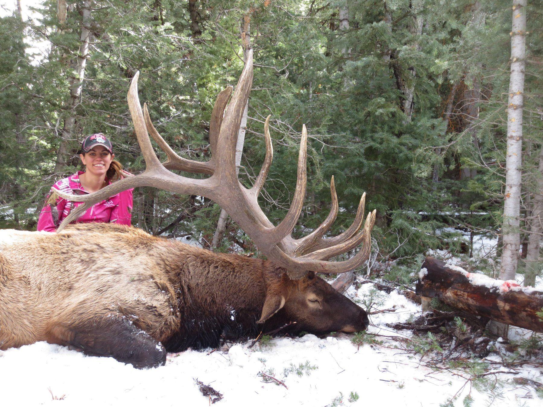 Planning Your 2018 Elk Hunt | Elk101.com | Eat. Sleep ...